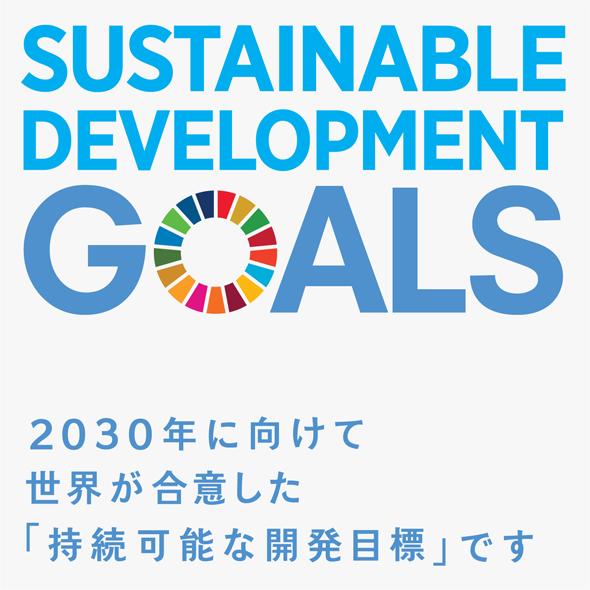 2030年に向けて世界が合意した「持続可能な開発目標」です